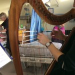 Picture of harpist